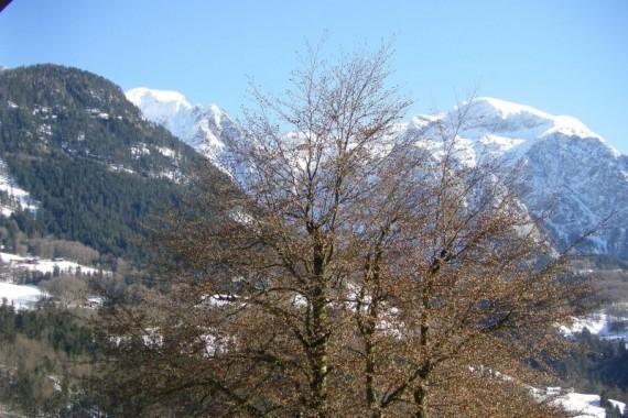 Winterbild8